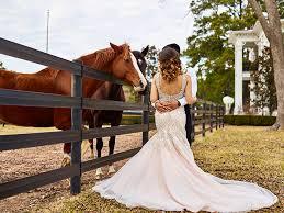 wedding planner houston events de luxe wedding planners weddings in houston