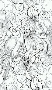 9952 best coloring pages for adults images on pinterest drawings