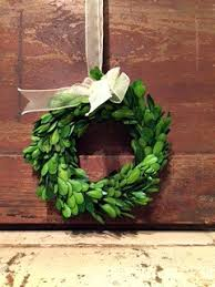 preserved boxwood wreath small preserved boxwood wreath brandywine view