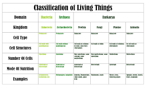 classification of living things worksheet the best and most