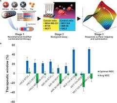 nanodiamonds the intersection of nanotechnology drug development