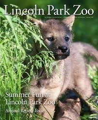summer fun at lincoln park zoo by lincoln park zoo issuu