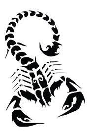 black outline scorpion tattoo design