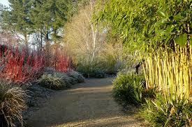 winter garden hantsweb