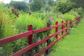 jardin cloture installer une clôture autour du jardin quel budget prix et tarif