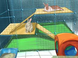 how to set up a rabbit cage 15 steps with pictures