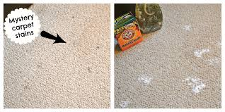 Rug Doctor Vinegar Clean Rugs With Baking Soda Roselawnlutheran