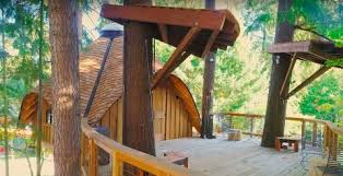 microsoft is building tree houses for its employees business insider