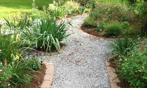 native plants for wildlife habitat and conservation landscaping how to create good wildlife habitat in your backyard