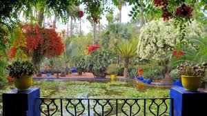 download wallpaper 2560x1440 balcony flowers pots pond water