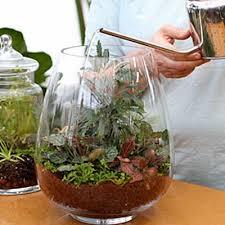 Indoor Garden Supplies - 52 best indoor and outdoor garden images on pinterest outdoor