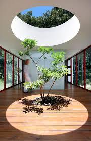 indoor tree space interior design ideas