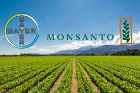 Seeking Bayer Bayer Seeking Eu Review Of Monsanto Deal Agnet West