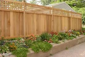 Fence Ideas For Small Backyard by Backyard Fence Ideas Traditional Swimming Pool With Fence