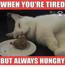 Tired Meme - 25 best memes about when youre tired when youre tired memes