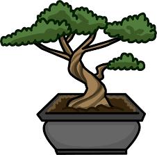 bonsai tree club penguin wiki fandom powered by wikia