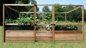 raised vegetable garden beds kits ktactical decoration