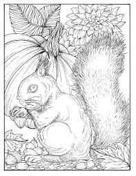 fall squirrel digital coloring page digi stamp thanksgiving