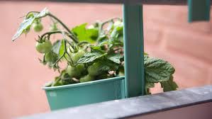balkon pflanzgefã ãÿe pvblik balkon mini idee