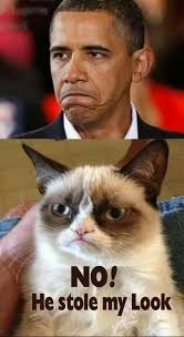 Funny Angry Memes - 27 grumpy cat funny memes page 3 quotes reviews