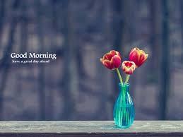 Good Vase Good Morning Wishes