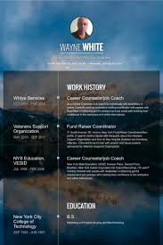 Sample Counselor Resume by Career Counselor Resume Samples Visualcv Resume Samples Database