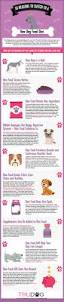 the 25 best raw dog food ideas on pinterest food for dogs best