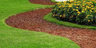lawn care services for memphis u0026 collierville tn