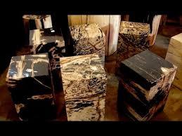 luxury petrified wood decor