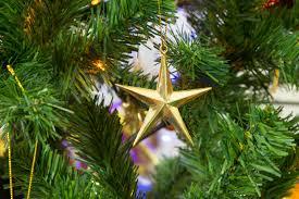 free stock photo of christmas christmas star christmas tree
