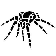 spider tattoos tattoo designs gallery unique pictures and ideas