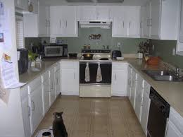 Pictures Of Kitchens With White Cabinets And Black Appliances by Interesting Kitchen Design White Cabinets Black Appliances With
