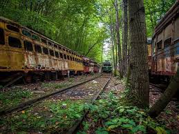 North Carolina forest images 131 best train trolley grave scrap yards images jpg