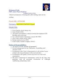 resume format exles for steel fabrication m fathy cv