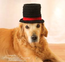 top hat for dogs dog costume wedding dog attire dog formal wear