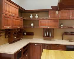 Kitchen Cabinet Door Designs Clever Creamy Wall Color Plus Classic Kitchen Design Kitchens