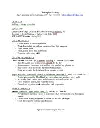 Example Of Modern Resume by Culinary Resume Skills 33129 Plgsa Org