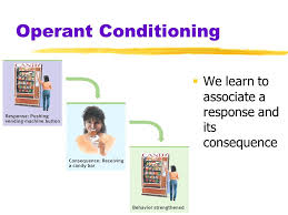 psychology chapter 8 learning learning relatively permanent