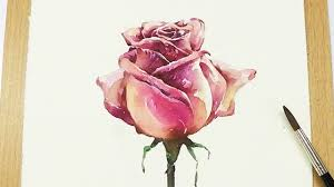 lvl5 how to paint a rose in watercolor step by step tutorial