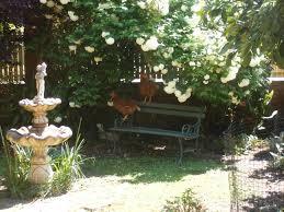 garden outsidethesquare101