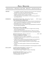 Professional Experience Examples For Resume by Resume Layout Examples Sample Resume Layout Professional