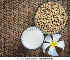 cuisiner le soja frais soja frais graines lait graine soja séché cuisine photo de