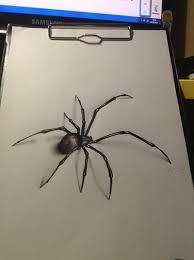 Best 25 Spider Meme Ideas - best 25 spider drawing ideas on pinterest image au scribble