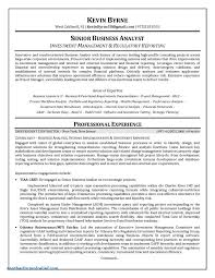 project analysis report template project delay analysis report format future templates