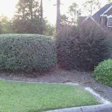 Landscaping Columbia Sc by Clean Cut Lawns Llc Landscaping Columbia Sc Phone Number Yelp