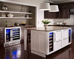 undercounter refrigerator kitchen contemporary with appliance