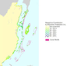 Blank Map Of Belize by Belize Shoreline Protection From Mangroves World Resources