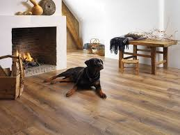 Is Laminate Flooring Good For Dogs Are Vinyl Flooring Suitable For Pets Info Wood Culture