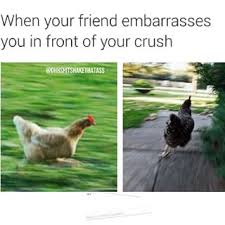 Chicken Running Meme - community post 15 situations that will have you running like a
