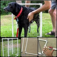modern dog ring holder images 847 best diy dog projects images dog stuff dog jpg